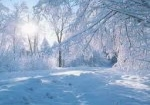 Новогодний тур «Рагу из кролика по-славянски (калорийное блюдо)»